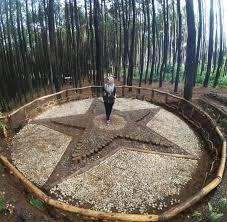 Keindahan Hutan Pinus Mangunan
