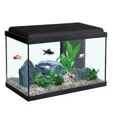 aquarium poisson prix aquariums et meubles achat aquarium de qualité animalerie truffaut