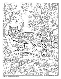 Creative Haven Fanciful Foxes Coloring Book By Marjorie Sarnat Moon Fox