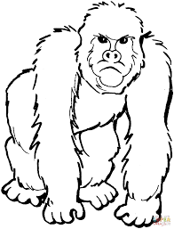 Gorilla Coloring Pages Archives In Page