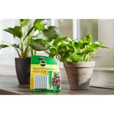Menards Christmas Trees Recalled by Miracle Gro Indoor Plant Food Spikes 48 Spikes Walmart Com