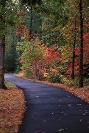Parkland Landscape Management Easements Parkland Outdoor Patio