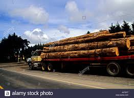 Logging Truck In Costa Rica On Pan-american Highway Stock Photo ... Self Loader Logging Truck Image Redding Driver Hurt In Collision With Logging Truck 116th Tg 410a Wcrane 3 Logs By Bruder Helps Mariposa County Authorities Stop High Speed Accidents Youtube Forest Service Aztec New Zealand Harvester Forwarder More Wreck Log Timber Poster Print 24 X 36 Logging Truck Fixed Bunk V10 Fs17 Farming Simulator 2017 17 Ls Mod Kraz 250 Spintires Mods Mudrunner Spintireslt Hi Res Stock Photo Edit Now Shutterstock