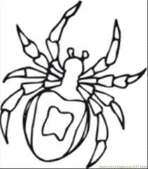 Th Insect Coloring Page Book