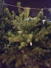 Tannenbaum Christmas Tree Farm Michigan by Damn Arbor December 2014