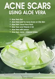 How to Clear Acne Scars using Aloe Vera
