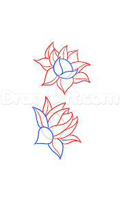how to draw a lotus flower tattoo step 3