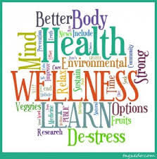Individual Wellness Visits Can Be Made For Students To Assessed And Or Work Towards A Goal
