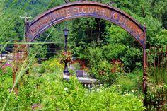 Lake Lure Flowering Bridge Things to do Pinterest