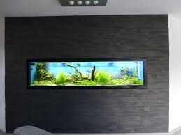 aquarium dans le mur projet aquarium mural