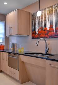Schock Sinks Cleaning Products by Sinks Countertopresource Com A Resource For Countertop