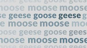 Slang Synonyms For Bathroom by Goose Definition Of Goose By Merriam Webster