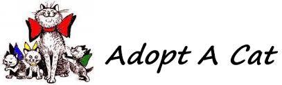 adopt a cat adopt a cat save a adopt a cat