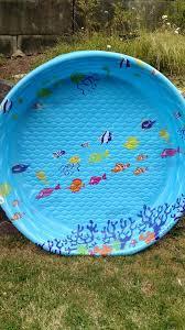 FREE Hard Plastic Kiddie Pool NEW For Sale In Bellingham WA