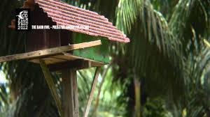 KLEFF2012 Trailer - The Barn Owl: Predator Among The Palms - YouTube Amazing Barn Owl Nocturnal Facts About Wild Animals Barn Owl By David Cooke For Sale The Sculpture Parkcom Rhodium Comes To Canada With Its Striking New Nocturnal Nature Flying Wallpapersbirds Unique Hd Wallpapers Owls In Kuala Lumpur Bird Park Stock Photo Image 87325150 Biocontrol View Common In Malaysia Sekinchan Paddy Field Youtube Another Blog Farmers Friend Bear With Him Girl Mom Birds Of World Owls