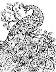 Pretty Coloring Pages Free Printable Bursting Blossoms Flower Sheets