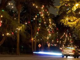 Christmas Lights In Los Angeles Tree Lane