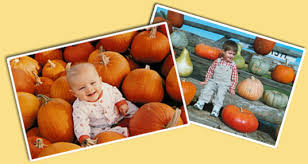 Pumpkin Farms In Bay County Michigan by Fleitz Pumpkin Farm In Oregon Ohio Offers Fall Family Fun With A