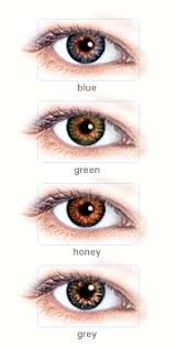 Prescription Halloween Contacts Astigmatism by Fast Facts About Toric Contacts For Astigmatism Color Me Contacts