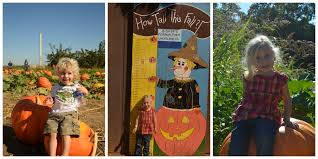 Pumpkin Patch Sacramento 2015 by It U0027s The Most Wonderful Time Of Year U2026 And Bishops Pumpkin Farm Is