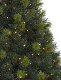 Christmas Tree Species Canada by Scotch Pine Artificial Christmas Tree Balsam Hill