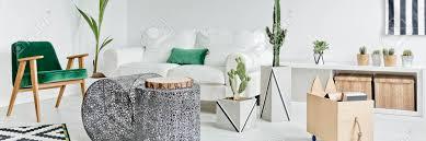 modernes weißes wohnzimmer mit kakteen und grünem zubehör dekoriert