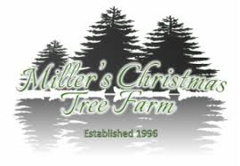 Christmas Tree Hill Shops York Pa by Miller U0027s Christmas Tree Farm Miller U0027s Christmas Tree Farm About