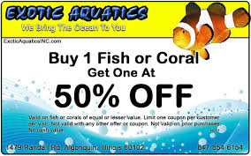311 Store Coupon - Travel Deals From St. Johns Nl Acronis True Image 2019 Discount True Image Coupon Code 20 100 Verified Discount Moma Coupon Code 2018 Cute Ideas For A Book Co Economist Gmat Benchmark Maps Tall Ship Kajama Backup Software Cybowerpc Dillards The Luxor Pyramid Win 10 Free Activator Acronis Backup Advanced Download Avianca Coupons Orlando Apple Deals Mediaform Au