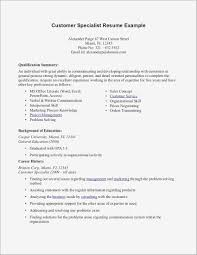 Customer Service Qualifications Resume Lovely Summary Statement Examples Of Resumes Pdf Format For A