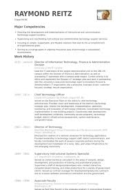 Director Of Information Technology Finance Administration Division Resume Example