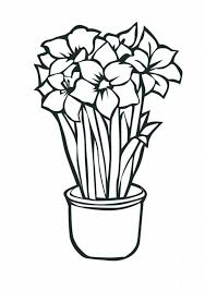 Latest Tropical Flower Coloring Pages Lrg