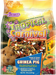 Can Guinea Pigs Eat Cooked Pumpkin Seeds by Tropical Carnival Gourmet Guinea Pig Food F M Brown U0027s