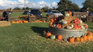Underwood Farms Pumpkin Patch Hours by Keema U0027s Pumpkin Farm Youtube