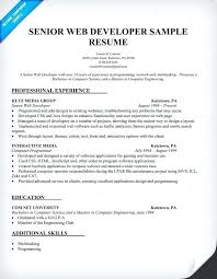 Resume Objective Example Web Developer Packed With Resumes