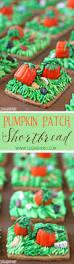Shawns Pumpkin Patch Hours by 17 Best Images About Pumpkin Crazy The Best Pumpkin Desserts On