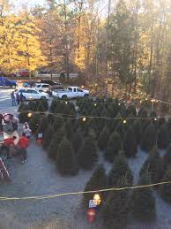 Waste Management Christmas Tree Pickup Orange County by Christmas Trees