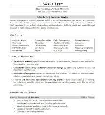 Key Competencies Examples For Resume Best Of Skills In Resumes