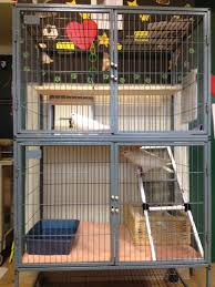 How To Choose A Cage For Pigeons Or Doves | Gallery Interior Design Center Cages Aviaries The White Finch Aviary Small Spaces Bathroom Organizing And Decor Artful Attempt Twin Farms Bnard Vermont Luxury Resort Cockatiels In Outdoor Youtube Just Property House For Sale Hill Plants Pinterest Majestic Custom Hickory Nursing Home Zoo Berlins New Bird House Dinosaurpalaeo Bird Big Screen Tv Cabinets On Idolza How To Build Indoor Finch Aviary Yahoo Image Search Results