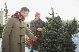 Silver Tip Christmas Tree San Jose by How To Buy A Christmas Tree In 7 Easy Steps Sfgate