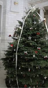 CHRISTMAS TREE Despite Governor Chafees Insistence That It Be Called A Holiday Tree