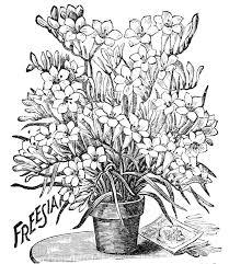 superbe pot de fleurs à colorier a vos crayons coloriage de