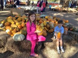 Carmichaels Pumpkin Patch Oklahoma by Carmichael U0027s Pumpkin Patch Bixby Ok Holiday Displays On