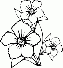 Bouquet Of Flowers Coloring Page Drawing Hearts And Roses In Flower