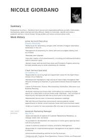 Toys R Us Resume Examples ResumeExamples