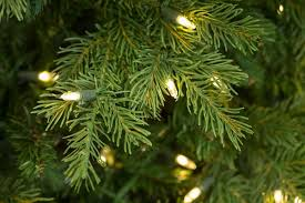 Nordic Fir Artificial Christmas Tree 6ft by Christmas 7ft Bayberry Spruce Slim Feel Real Artificial