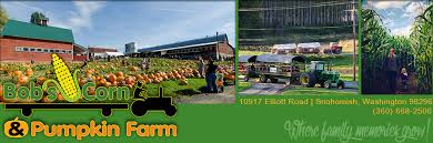 Pumpkin Patch North Bend Oregon by Bob U0027s Corn Maze And Pumpkin Farm In Snohomish Washington N E