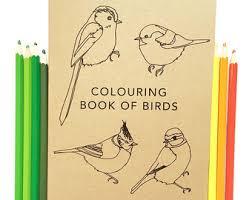 Colouring Book Of Birds Bird Coloring