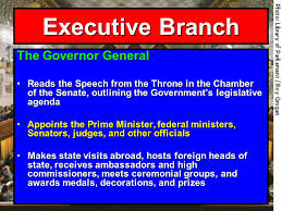 government and law making ppt video online download
