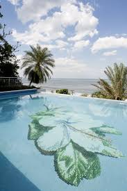 Best Pool Waterline Tile by 31 Best Terrific Tile Images On Pinterest Swimming Pools Dream