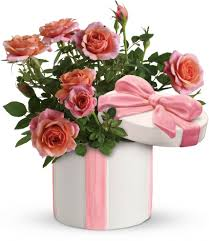 Teleflora's Rose Garden Save 25% On This Bouquet And Many ... Save 50 On Valentines Day Flowers From Teleflora Saloncom Ticwatch E Promo Code Coupon Fraud Cviction Discount Park And Fly Ronto Asda Groceries Beautiful August 2018 Deals Macy S Online Coupon Codes January 2019 H P Promotional Vouchers Promo Codes October Times Scare Nyc Luxury Watches Hong Kong Chatelles Splice Discount Telefloras Fall Fantasia In High Point Nc Llanes Flower Shop Llc